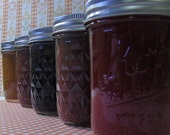 Wild Alaska Blueberry Jam