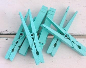 Beach Glass Aqua Colored Clothespins