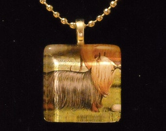 Old Timey Yorkshire Terrier or Silky Terrier Glass Tile Necklace
