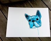 Drool - Blue French Bulldog - A4 art print of an original ballpoint and watercolor illustration