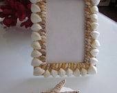 Beach decor, seashell no  pink seaglass frame