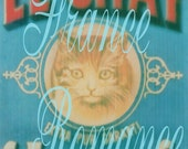 LE CHAT Antique French Advertisement Turquoise Teal Digital Download Cat Photograph Photo Ad 300dpi  3.5 x 5.5 Print 11P