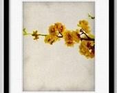 Branch of Yellow Flowers - The Original Botanical Series - Fine Art Print 8x10