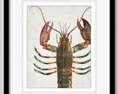 Colorful Lobster Close Up - Ocean Life Series - graphic illustration design archival giclee art print 8.5x11