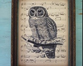 owl decor,sheet music, print, bookpage print, owl, vintage bookpage print, book page,art print