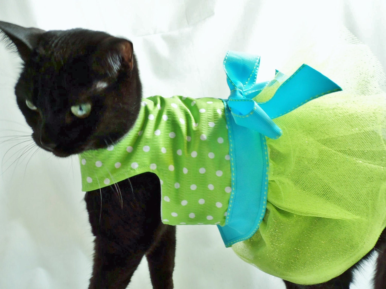 Сшить одежду кошке 91