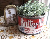 Great Vintage Butter-Nut Coffee Tin with Succulent Plant
