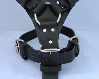 Black Large Leather Dog Harness with a Ring