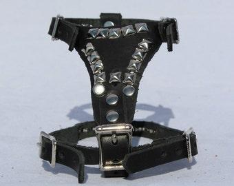 X-Small Black Leather harness Pyramid Studs