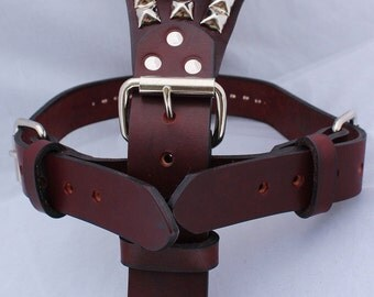 Burgundy Large Leather Dog Harness with Pyramids