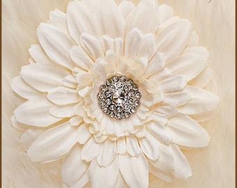Daisy Hair Clip - Cream Gerbera Accent for Brides or Children Photo Prop
