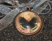 """Black Butterfly on Peach in Antique Bronze Metal with 16"""" Pink Ribbon Necklace"""