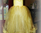 Princess Belle Tutu Tulle Dress Costume Birthday Beauty and the Beast