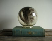 Vintage Glass Display Globe