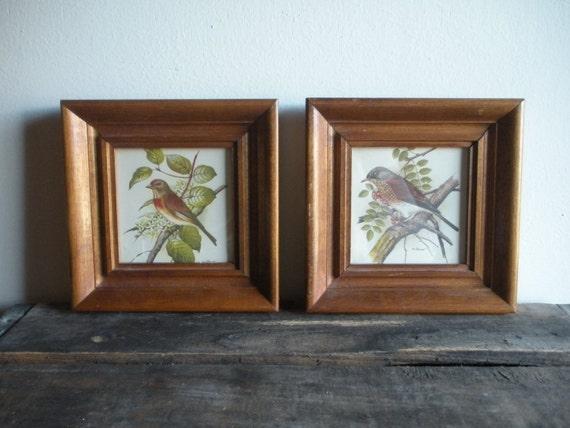 Pair of Framed Bird Prints
