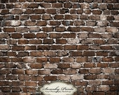 3.5 x 3.5 foot Vinyl Backdrop old brick wall perfect for newborn pics, children
