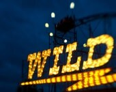Carnival Wild Vintage Sign for the Rollercoaster 8x10 Photography Art Print