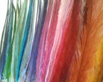 100 Emu Feathers, Jewelry Making, Millinery & Hat Making Supplies, Feather Earrings, Feather Hair Extensions, Fascinators, Dreamcatchers