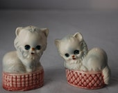 Kittens in basket Salt and Pepper Set