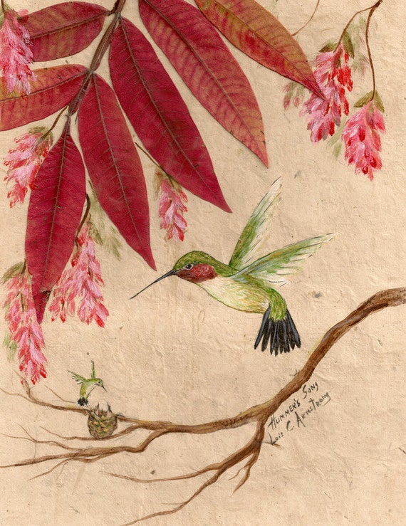 Hummingbird print from an oringial, signed by artist Lois Armstrong