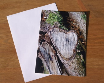 Natures Heart on a Tree Photographic image card.  Printed on semi- gloss card. A6 size. Blank.