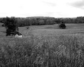 Valley Forge Another Stolen Moment