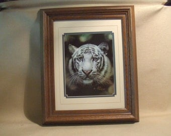 Limited edition QUA LEMONDS white tiger print -- matted and framed ready to hang --  signed and numbered print 328 of 500