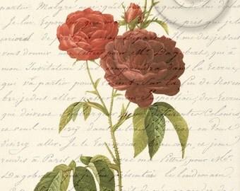 Antique Red Roses Digital Collage Art Vintage Print Digital Download