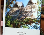 Family of Owls Photo Book, Photos of Owlets Growing Up, Nature and Wildlife Photography, Children's Book, Great Horned Owls