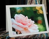 Blank Note Card - Pink rose Nature Flower Any occasion