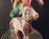 My Rotty Pony