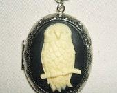 OWL Bird CAMEO Necklace Photo Locket Pendant