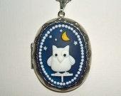 NIGHT OWL CAMEO Locket Necklace Pendant Holds Photos Whimsical Art Bird Sale