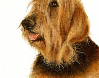 Original Oil DOG Portrait Painting OTTERHOUND Art from Artist