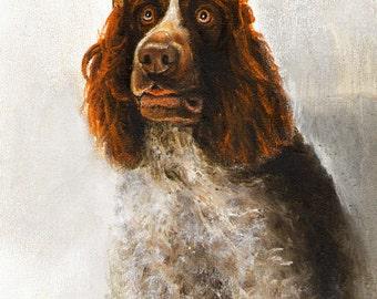 Original Oil DOG Portrait Painting GERMAN SPANIEL Art from Artist