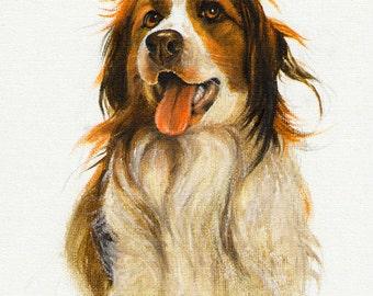 Original Oil DOG Portrait Painting KOOIKERHONDJE Art from Artist