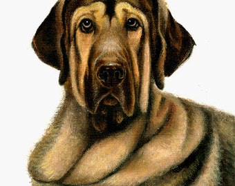 Original Oil DOG Portrait Painting SPANISH MASTIFF Artwork from Artist