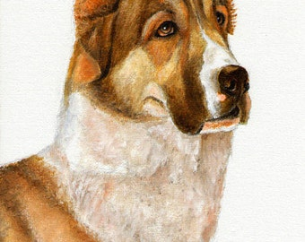 Original DOG Oil Portrait Painting RUSSIAN SHEEPDOG Artwork from Artist