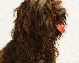 Original DOG Oil Portrait Painting SCHAPENDOES Artwork from Artist