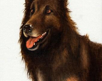 Original DOG Oil Portrait Painting BELGIAN SHEPHERD Artwork from Artist