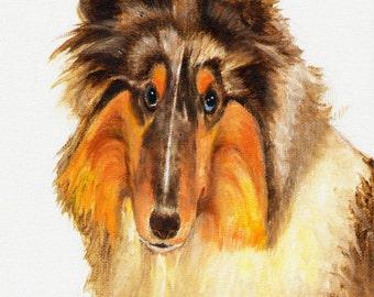 Original DOG Oil Portrait Painting COLLIE SHEEPDOG Artwork from Artist