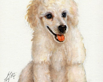 Original DOG Oil Portrait Painting WHITE POODLE Puppy Artwork from Artist