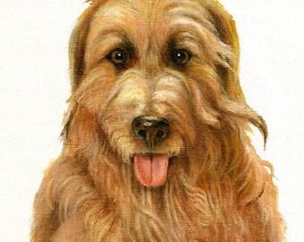 Original DOG Oil Portrait Painting CATALONIAN SHEEPDOG Artwork from Artist