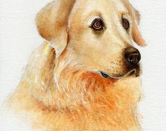 Original DOG Oil Portrait Painting MAREMMA SHEEPDOG Artwork from Artist
