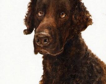Original Dog Oil Portrait Painting CURLY Coated BLACK RETRIEVER Artwork from Artist