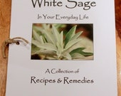 How to Use White Sage In Your Everyday Life