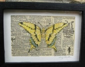 Butterfly Print, Home Decor, Vintage Butterfly Print, Natural History, Altered Butterfly Collage, Original Art, Insect Specimen Box