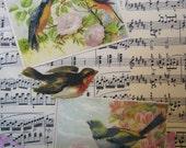 "Vintage Bird Collage Cottage Chic Home Decor Spring Vintage Bird Print Framed 8 3/4"" x 10 3/4"""