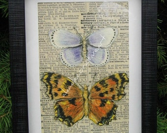 "Butterfly Art Vintage Butterfly Print Altered Art Collage Home Decor Natural History Specimen Box Original Art Framed 5 1/2"" x 7 1/2"""