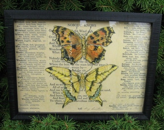 Butterfly Print, Vintage Butterfly, Home Decor, Original Altered Art Collage Print, Natural History, Specimen Box, 6 1/4 x 8 1/4 inches